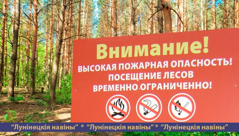 Photo of Запрет на посещение лесов введен на Лунинетчине из-за высокого класса пожарной опасности