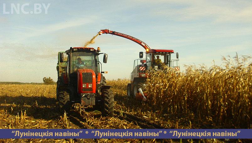 Photo of Холода торопят аграриев