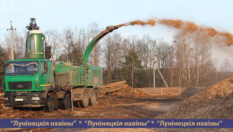 Photo of Экспортные дрова и не только…