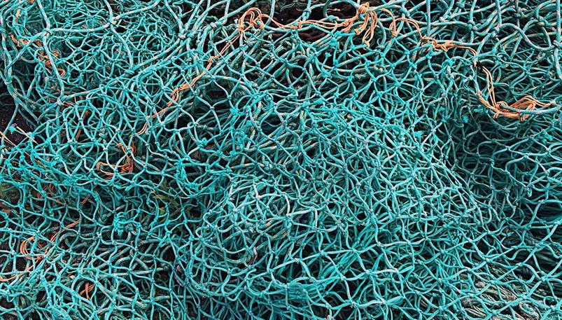 Photo of Добровольно сдавших сети рыбаков освободят от ответственности