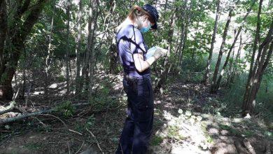 Photo of Житель Лунинецкого района подозревается в убийстве своего знакомого