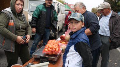 Photo of Осенняя ярмарка в Лунинце порадовала изобилием сельхозпродукции