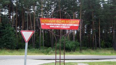 Photo of Полесской опытной станции – 75 лет!