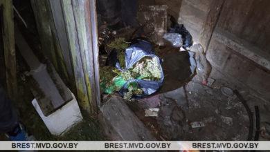 Photo of У жителя Лунинецкого района изъяли почти 450 грамм марихуаны