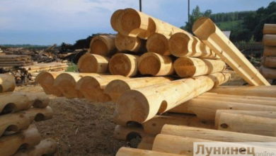 Photo of Правительство Беларуси вновь продлило для ОАО «Лунинецлес» процедуру санации