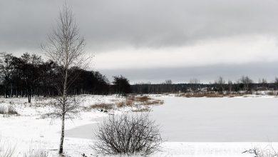 Photo of ОСВОД предупреждает об опасности в период таяния льда