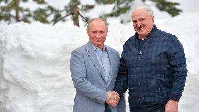 Photo of В Сочи прошли переговоры Президента Беларуси Александра Лукашенко и Президента России Владимира Путина