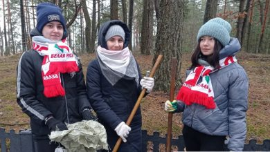 Photo of Трудовой десант организовали  представители СШ №1 г. Микашевичи