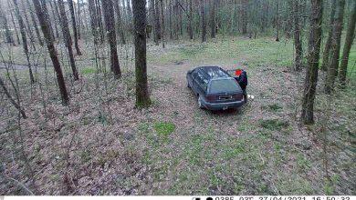 Photo of Фотоловушка зафиксировала нарушителя, который выбрасывал мусор в лесу