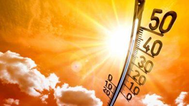 Photo of Медики советуют как пережить жару
