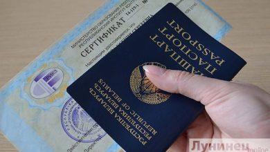 Photo of Завершился основной этап ЦТ. Когда в ПолесГУ начнут выдавать сертификаты?
