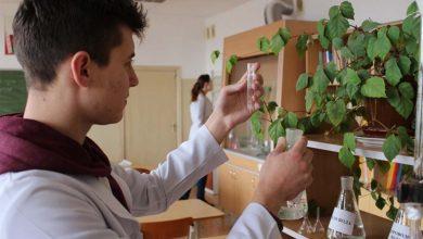 Photo of Престижная профессия биотехнолога уже в нашем регионе! Где ее можно получить?
