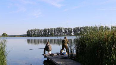 Photo of Разрешенные орудия и способы лова при любительском рыболовстве