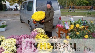 Photo of Сезон сельскохозяйственных ярмарок стартовал на Лунинетчине. Фоторепортаж