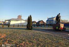 Photo of Несколько сотен кустов и деревьев высадят в эти дни в Микашевичах